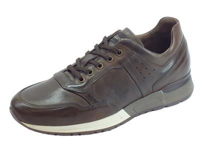 NeroGiardini A901190U Neopolis T. Moro sneakers stringate per uomo in pelle testa di moro