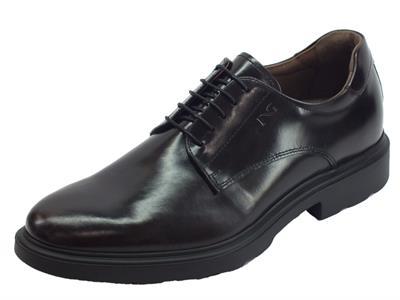 Articolo NeroGiardini A901141U Kingo Bordò scarpe eleganti stringate per uomo in pelle abrasivata bordò